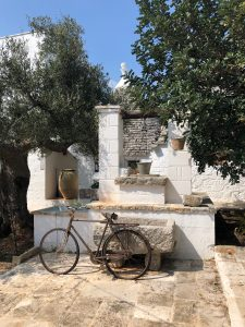 oliveoil-oliveoilproduction-weareinpuglia-puglia-oliveoiltasting