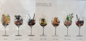 Wines of the Abbazia di Novacella in North Italy